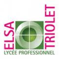 web 11A Elsa Triolet